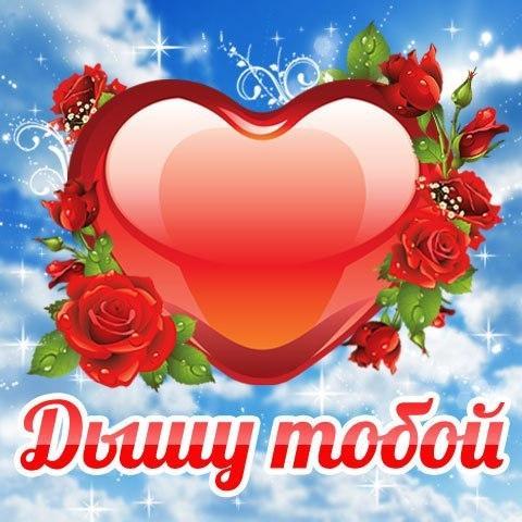 люблю 13