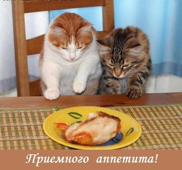 Kartinki Priyatnogo Appetita 13
