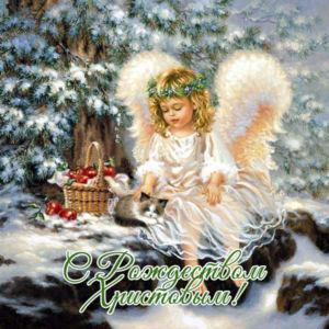 с Рождеством 13