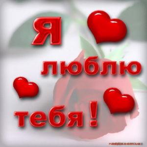 люблю 16