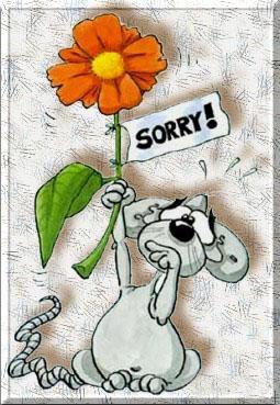 Sorry 5