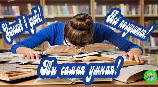 Открытка успехов в учебе для девушки